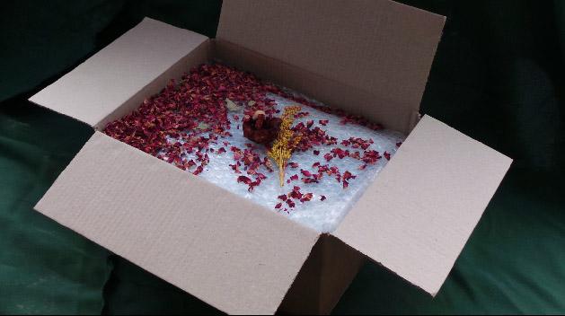 Casket packaging